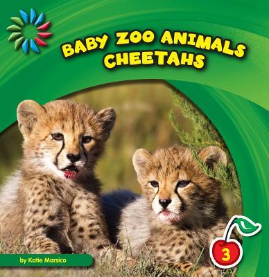 Cheetahs By Marsico, Katie